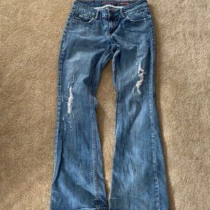 Chip and Pepper Laguna Beach flare jean size 7